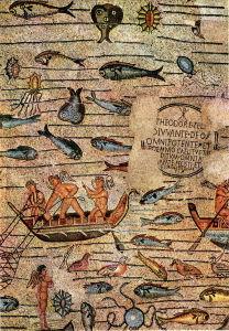 Friuli Venezia Giulia i mosaici di Acquileia