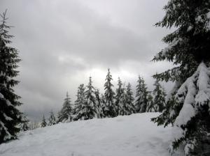 Dove sciare in Basilicata - Neve sul Monte_Pierfaone