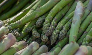 piatti tipici di Bologna - Asparago verde di Altedo